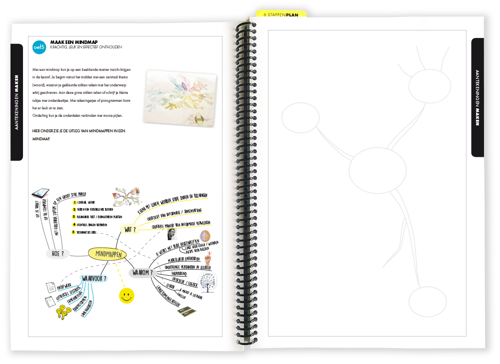 Plenda XL Mindmap